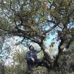 RANDO ECRITURE ST AVENTIN OCT 2010 023